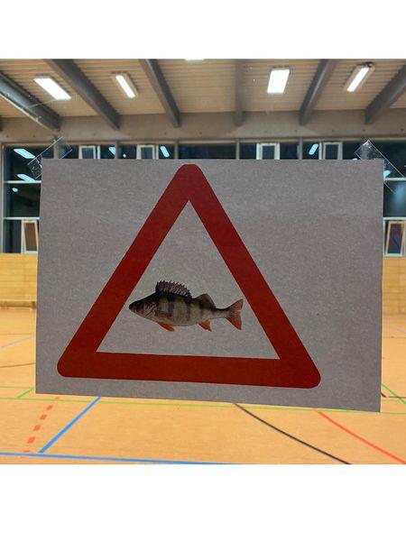 Barschalarm in der Eichendorffschule